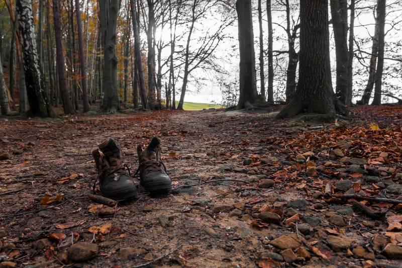 randonnée en famille bois de serres lyon